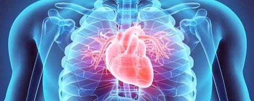 خواص قارچ گانودرما برای قلب